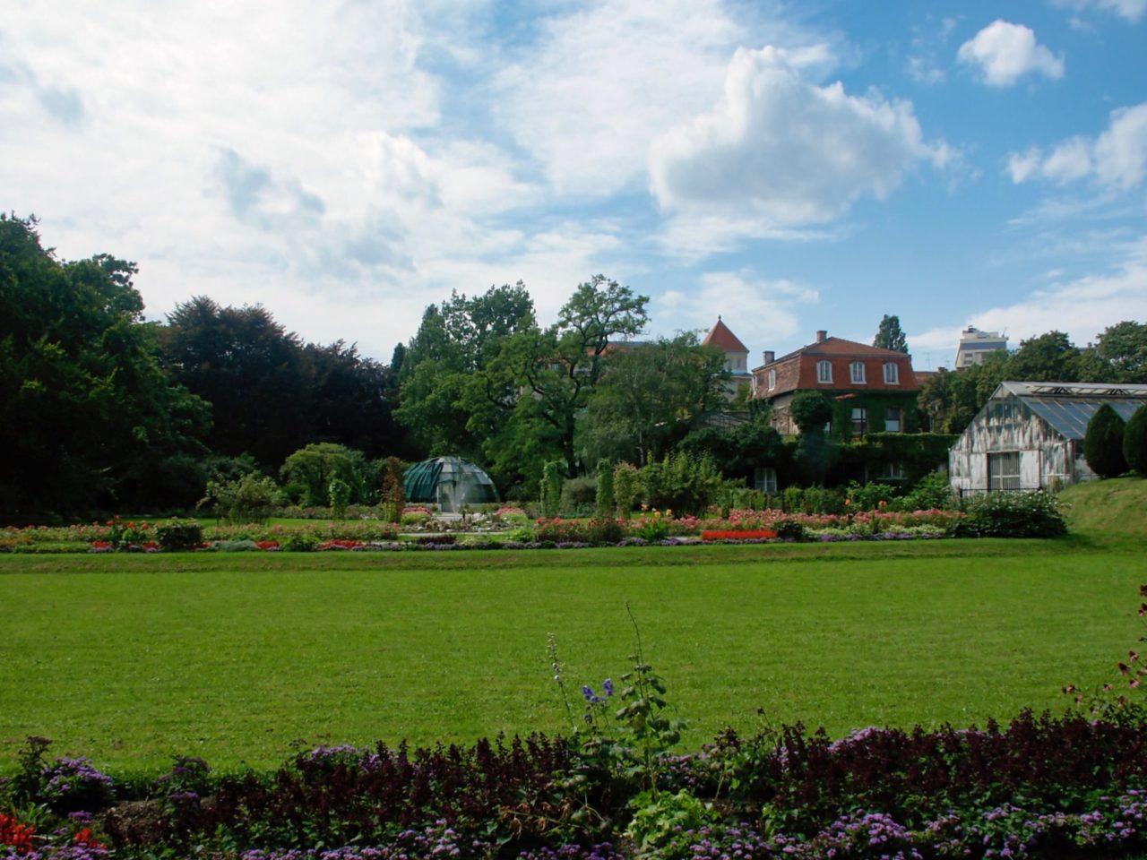 De botanische tuin in Zagreb grasveld