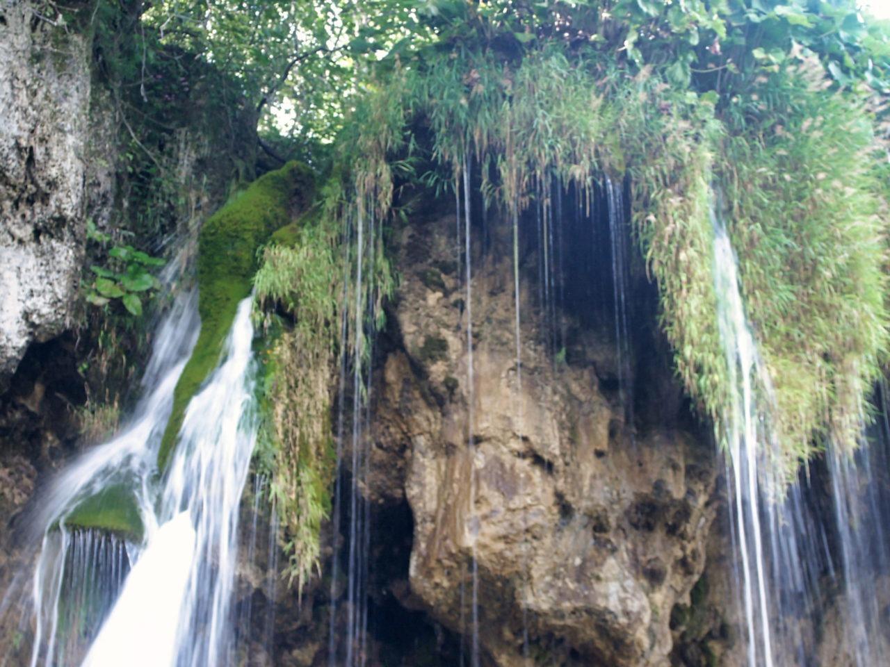 Water valt omlaag langs de planten